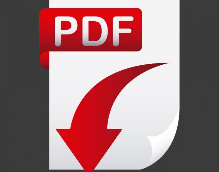 PDF Conversation Services
